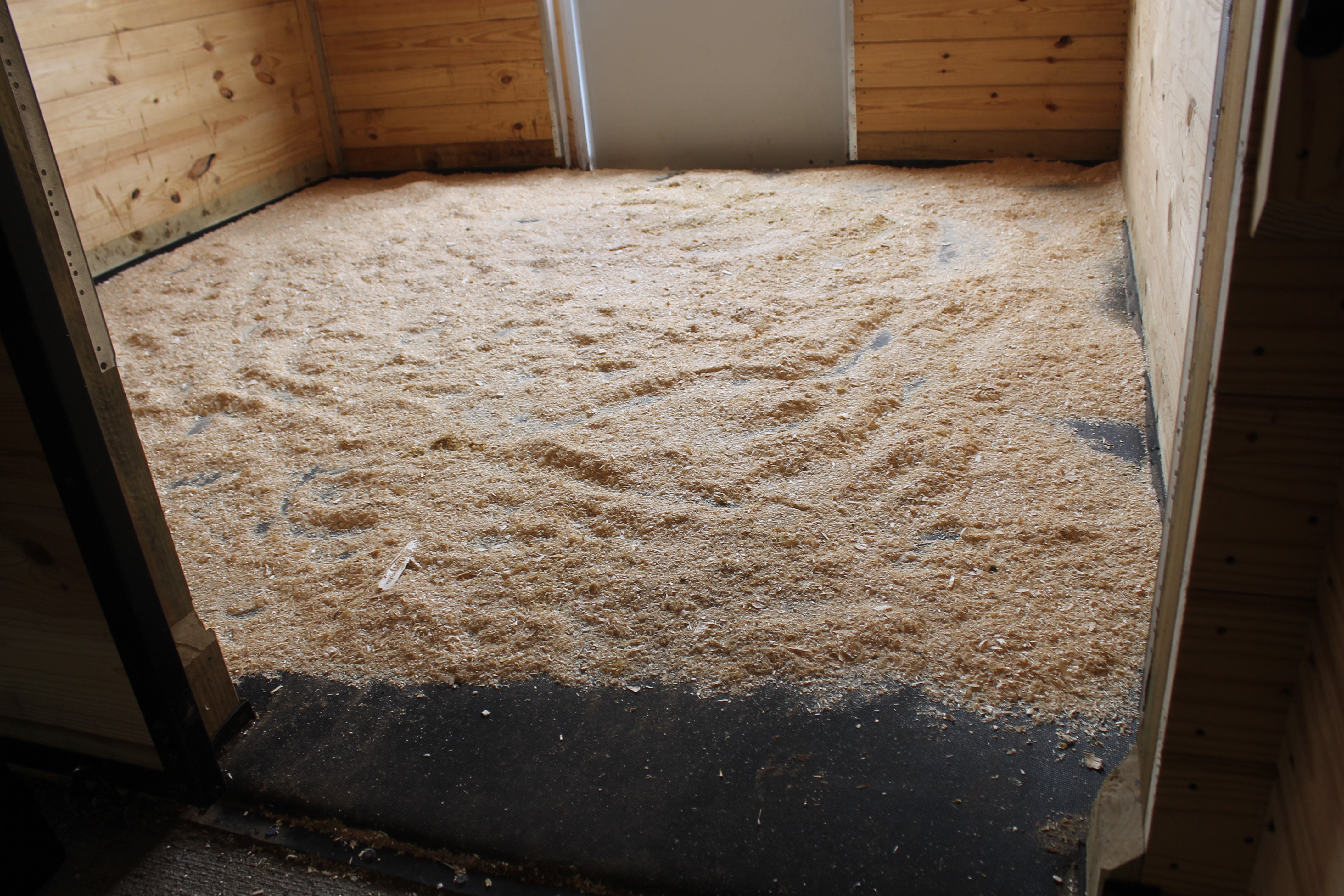 Options For Horse Stall Bedding Igk Equestrian